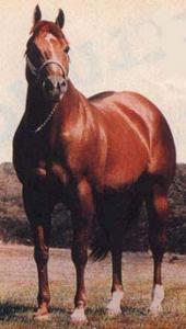 2013 HOF Horse - Impressive