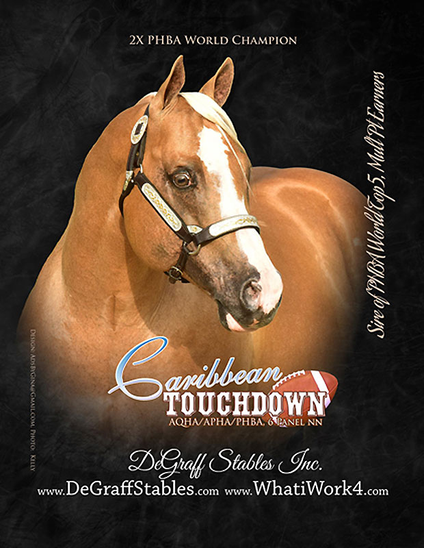 Nominated Stallions World Conformation Horse Association
