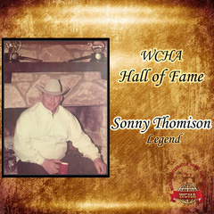 <strong>Sonny Thomison</strong>