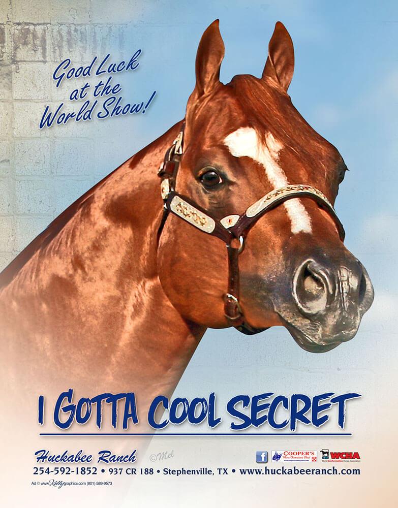 I Gotta Cool Secret-01-tiny
